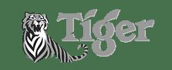 tiger webdesign